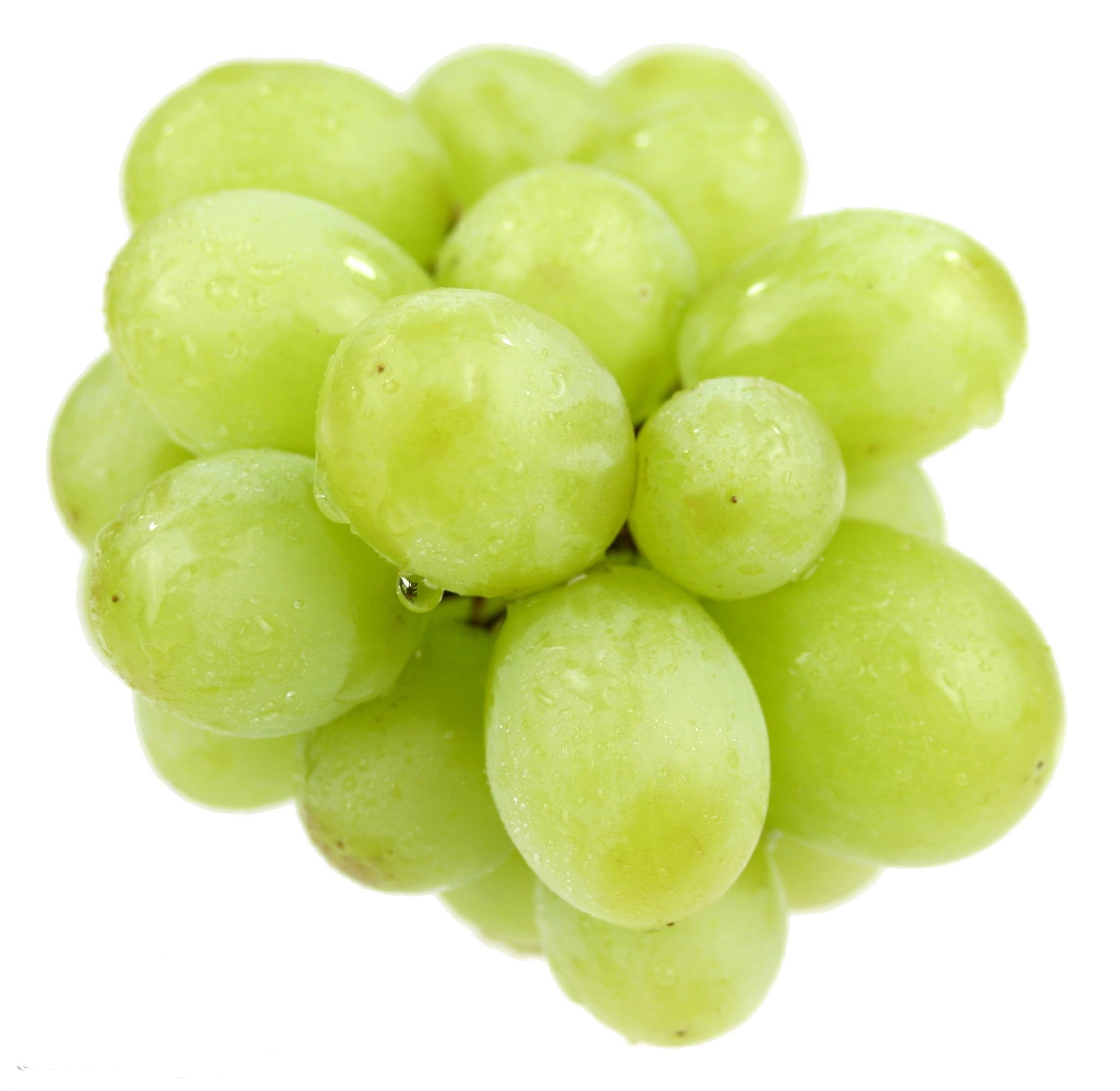 Grapes 187 3 Style Life